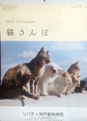2017c.jpg